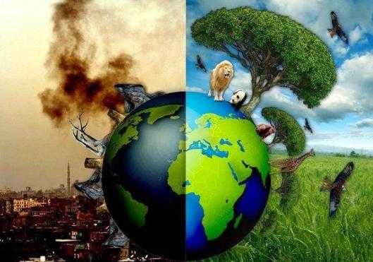 Il nuovo rapporto su ambiente e commercio globale